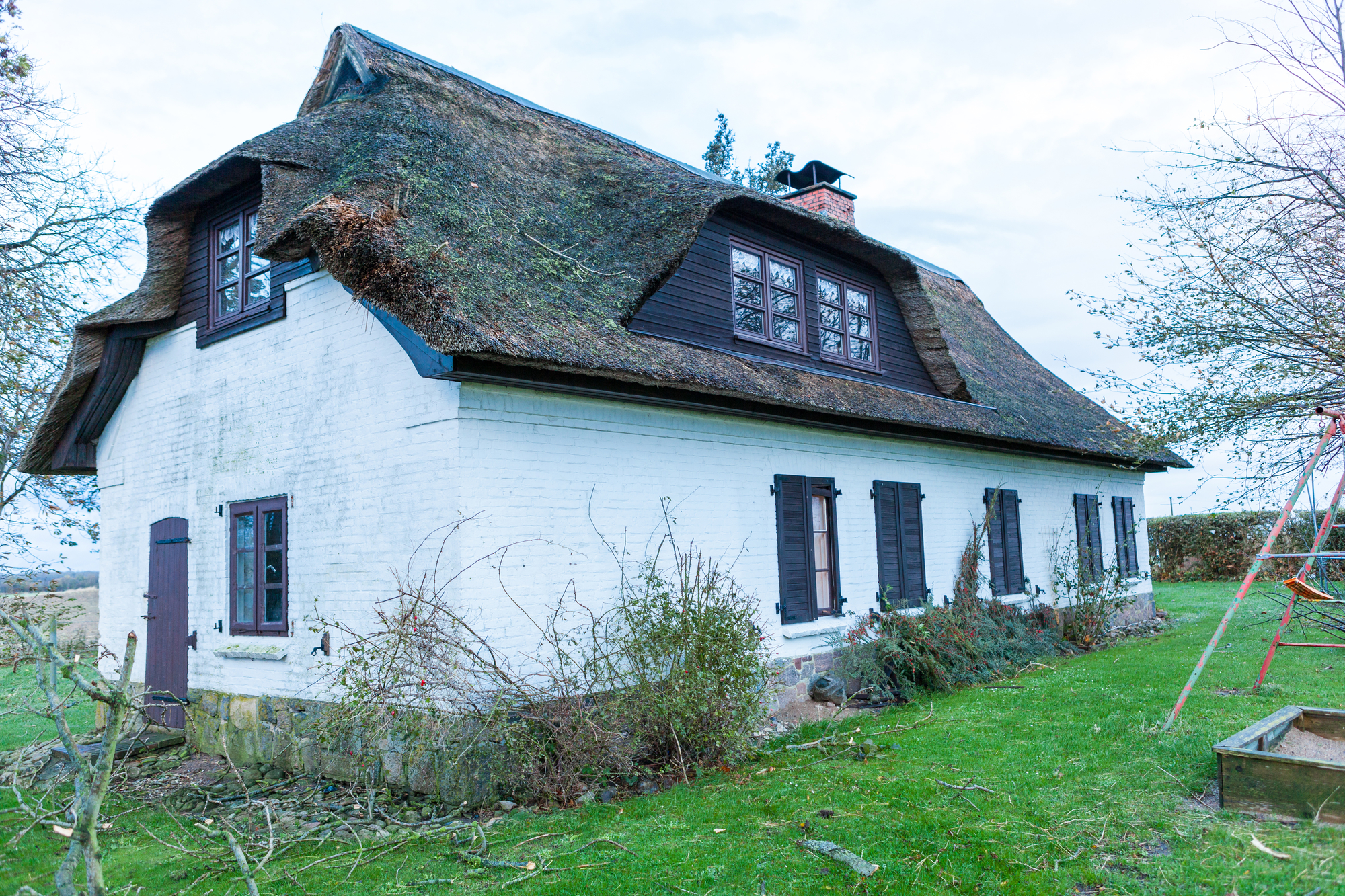 vegetation-roof